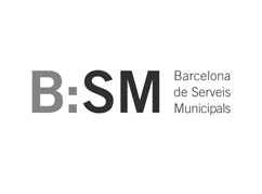 bsm-digitalgrowth