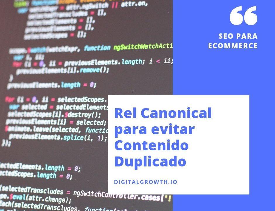Canonical Tag `para comercios electronicos